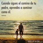 Cuando-sigues-el-camino-de-tu-padre-aprendes-a-caminar-como-el