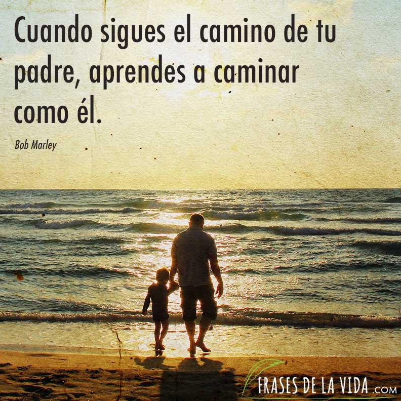 Cuando Sigues El Camino De Tu Padre Aprendes A Caminar Como
