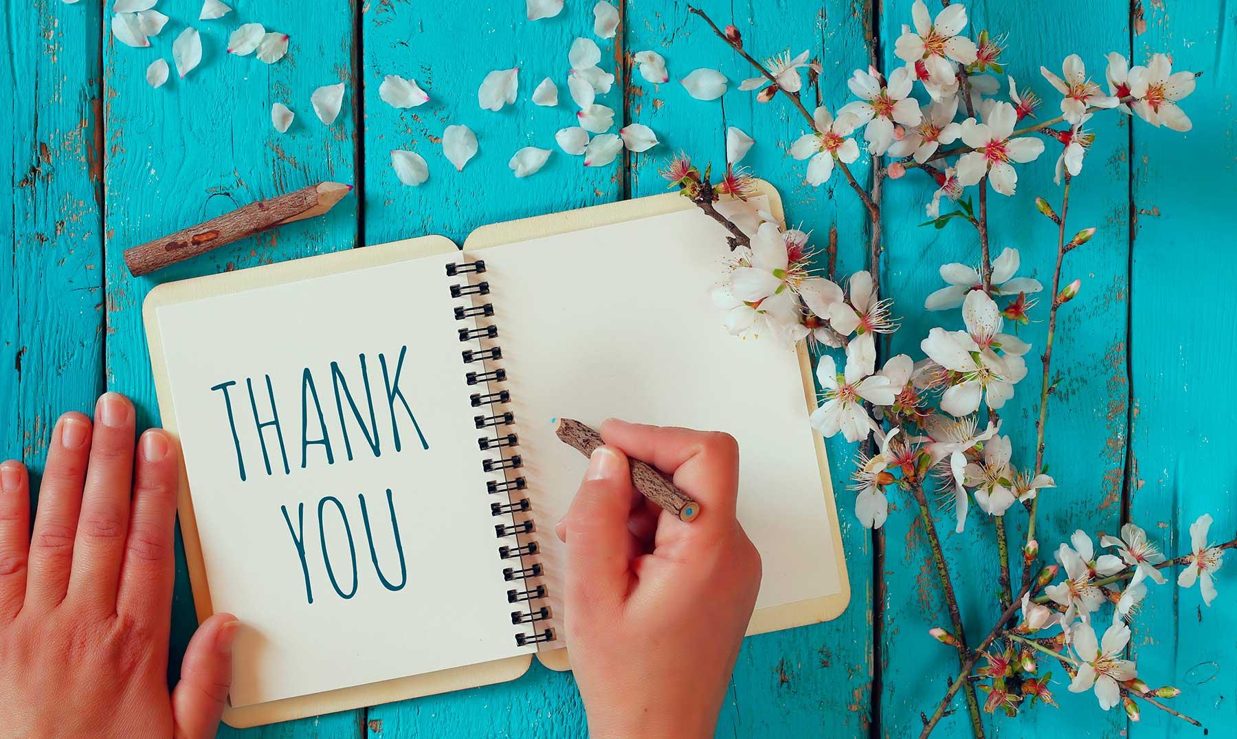 130 Frases De Agradecimiento Para Valorar Los Detalles Frases De