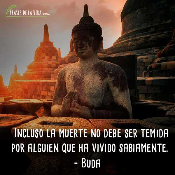 Frases de Buda, 4