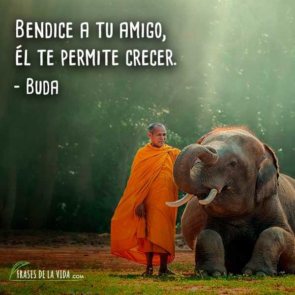 Frases de Buda, 5