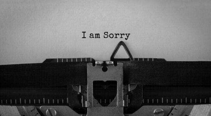 110 Frases de perdón | Para perdonar fácilmente las ofensas