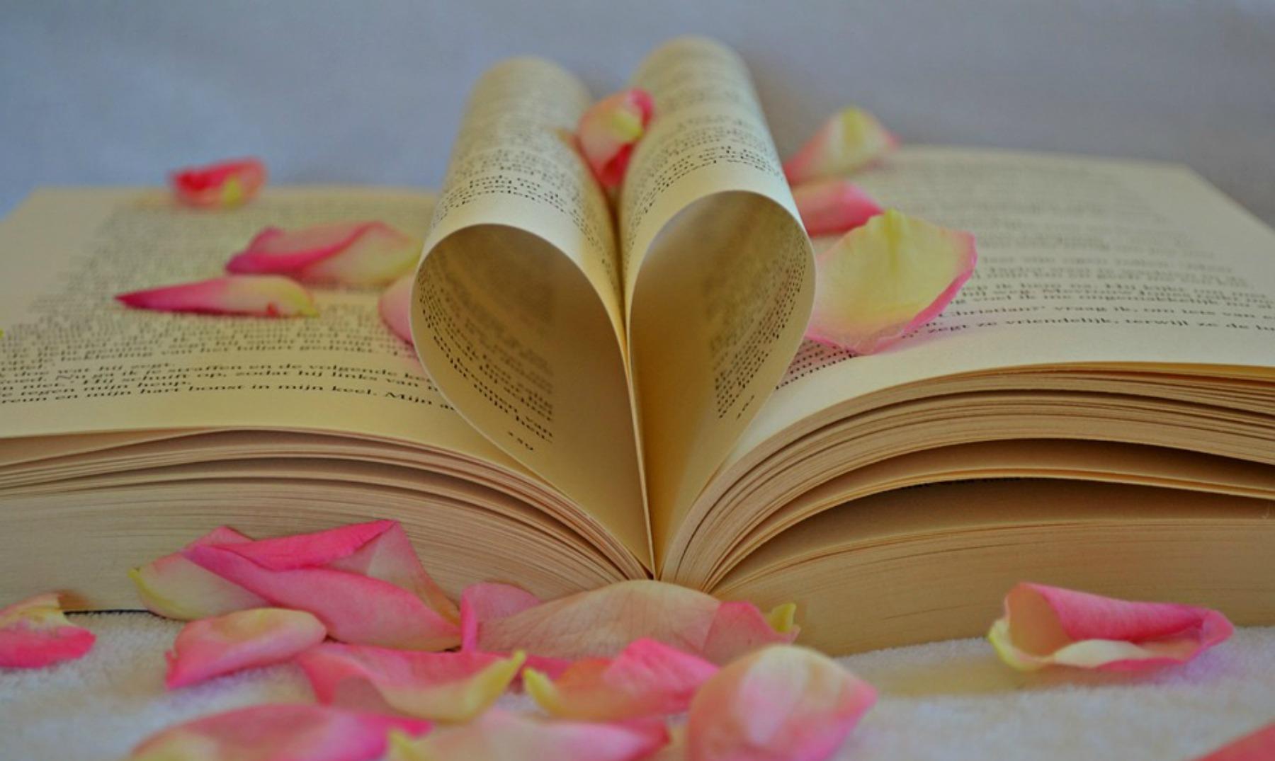 100 Frases De Amor De Libros Quisieras Dedicarlas