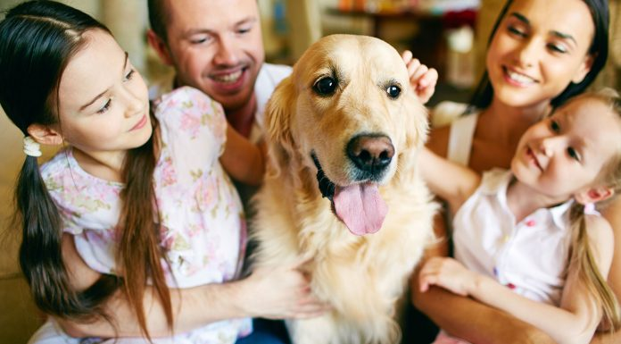 30 frases de familia para mantenerla unida 1