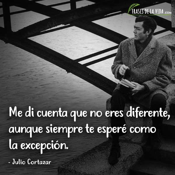 Frases de Julio Cortázar, Me di cuenta que no eres diferente, aunque siempre te esperé como la excepción.