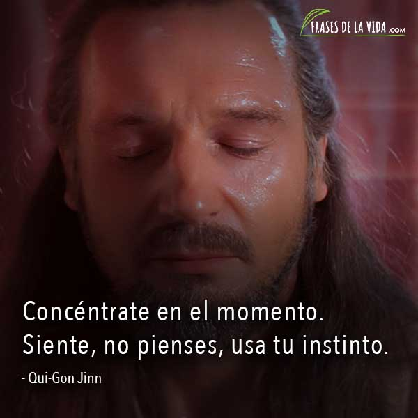 Frases de Star Wars, frases de Qui-Gon Jinn