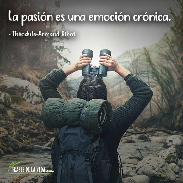 Frases de pasión, frases de Théodule-Armand Ribot