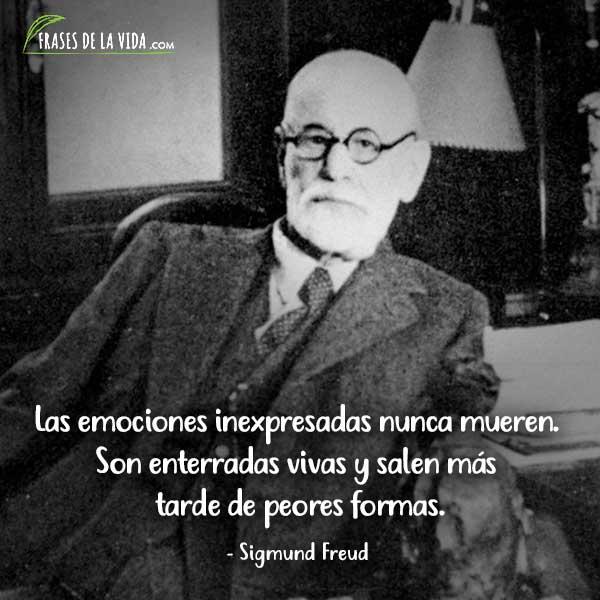 Frases de Sigmund Freud, Las emociones inexpresadas nunca mueren. Son enterradas vivas y salen más tarde de peores formas.