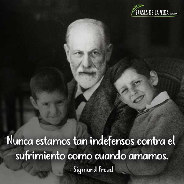 Frases de Sigmund Freud, Nunca estamos tan indefensos contra el sufrimiento como cuando amamos.
