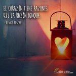 Frases De Amor Cortas Frases De San Agustin Frases De La Vida