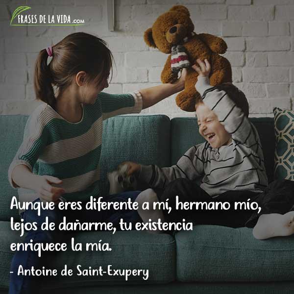 Frases para hermanos, frases de Antoine de Saint-Exupery