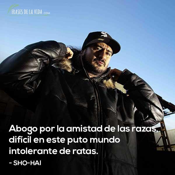 Frases de Sho-hai, Abogo por la amistad de las razas, difícil en este puto mundo intolerante de ratas.