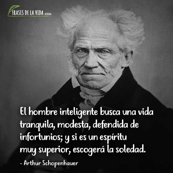 Frases de inteligencia, Frases deArthur Schopenhauer 5