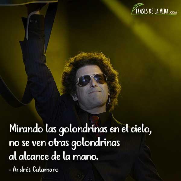 Frases de Andrés Calamaro, Mirando las golondrinas en el cielo, no se ven otras golondrinas al alcance de la mano.