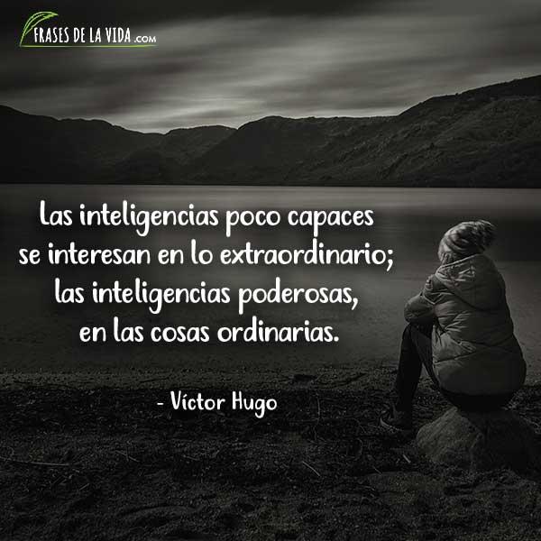 Frases de inteligencia, Frases de Víctor Hugo 1