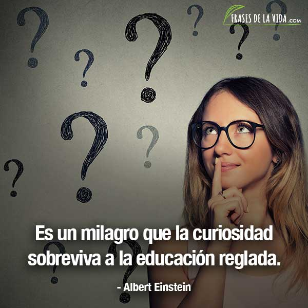 Frases Sobre La Curiosidad Frases De Albert Einstein