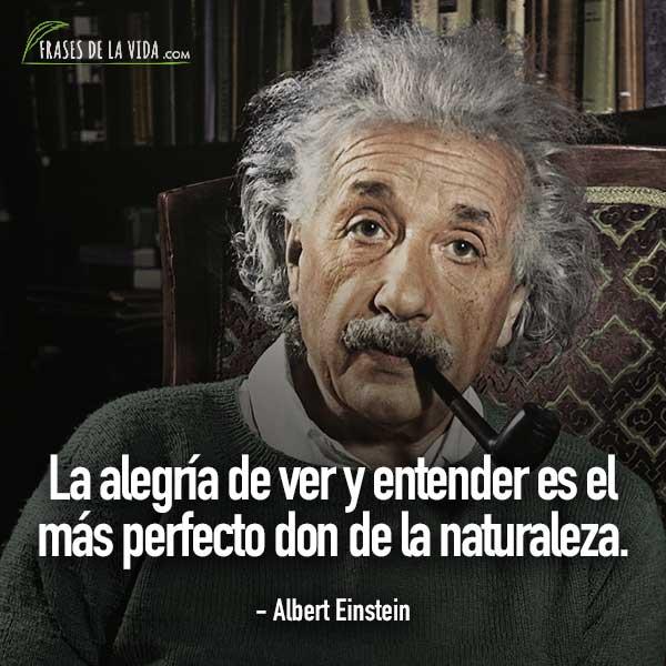 Frases de Albert Einstein, La alegría de ver y entender es el más perfecto don de la naturaleza.