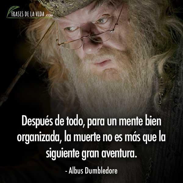 Frases de Harry Potter, frases de Albus Dumbledore