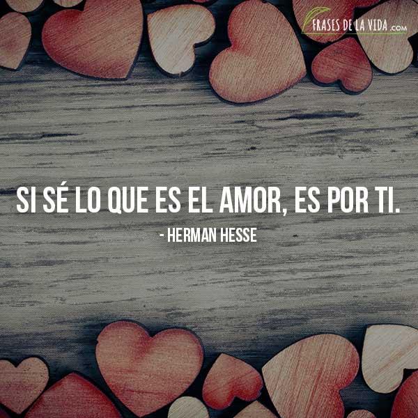 110 Frases De Amor Para Ella Palabras A Una Mujer Con