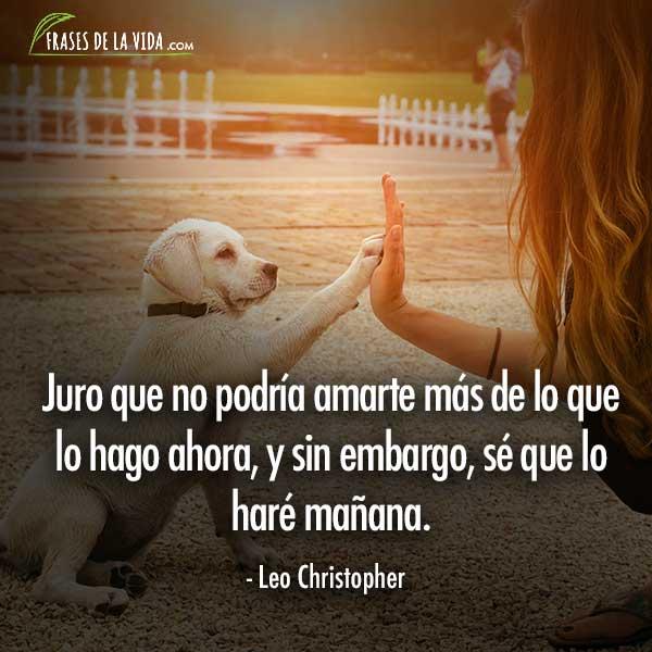 Frases de amor y amistad, frases de Leo Christopher