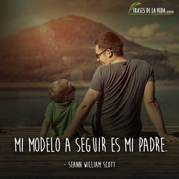 Frases para papa, frases de Seann William Scott