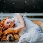 Frases Sobre Animales Amor Gato Frases De La Vida