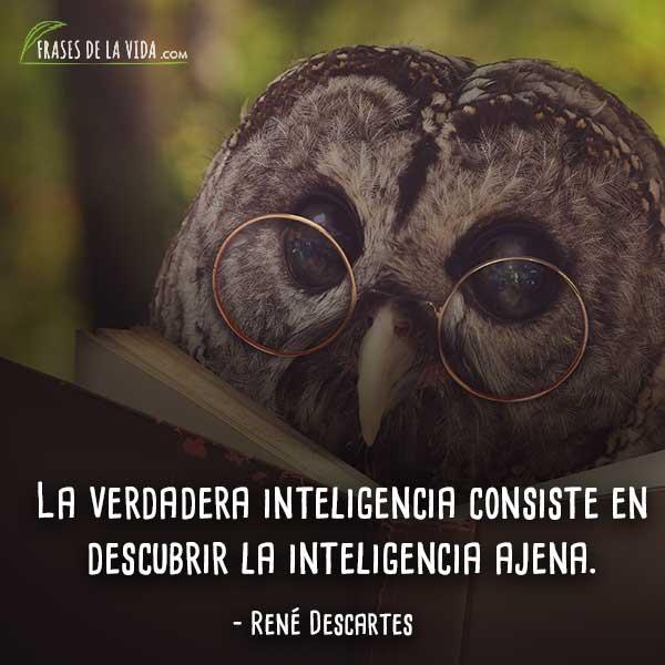 Frases de Descartes, La verdadera inteligencia consiste en descubrir la inteligencia ajena.