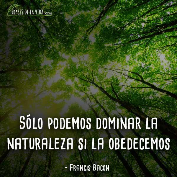 80 Frases De Naturaleza La Armonía De Los Seres Vivos Con