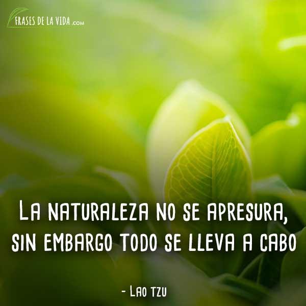 Frases-naturaleza-6