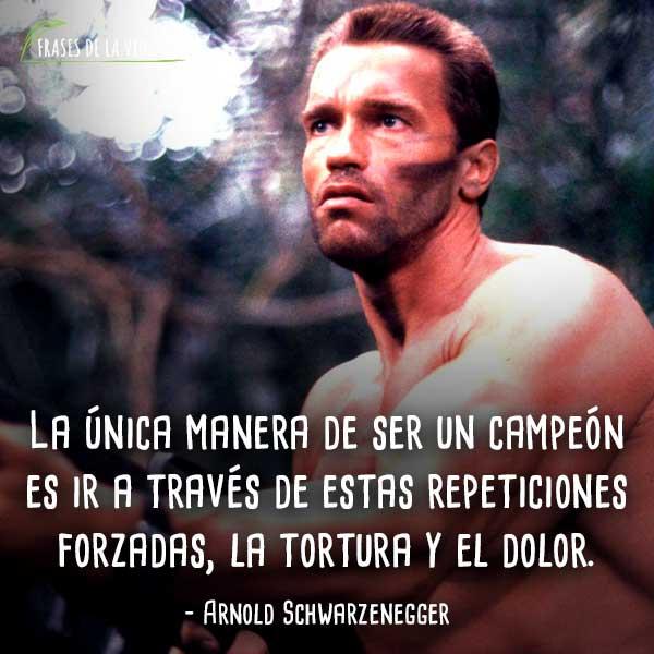 50 Frases De Arnold Schwarzenegger Referente Del Culturismo