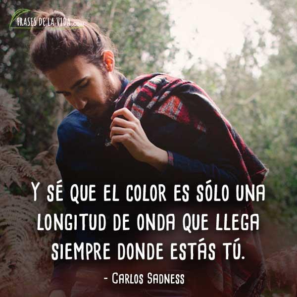 Frases-de-Carlos-Sadness-1