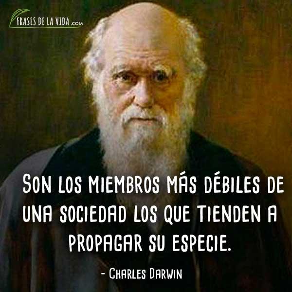 Frases-de-Charles-Darwin-1