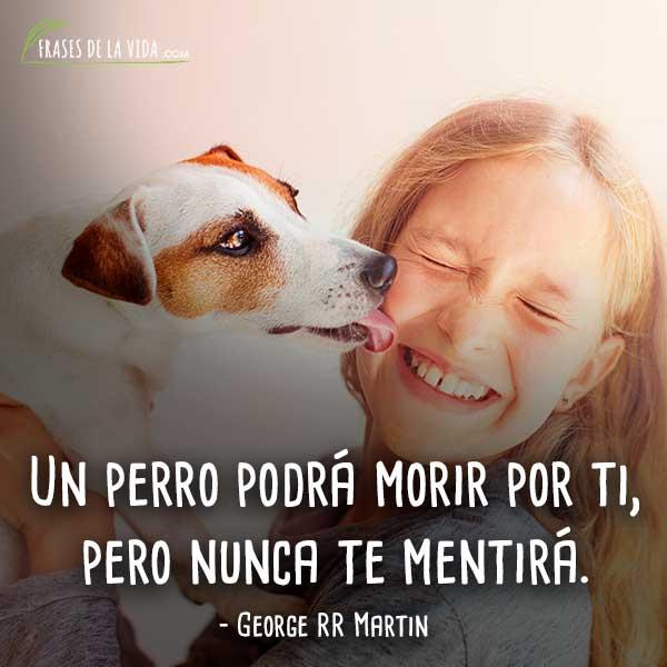 Frases-de-perros-2