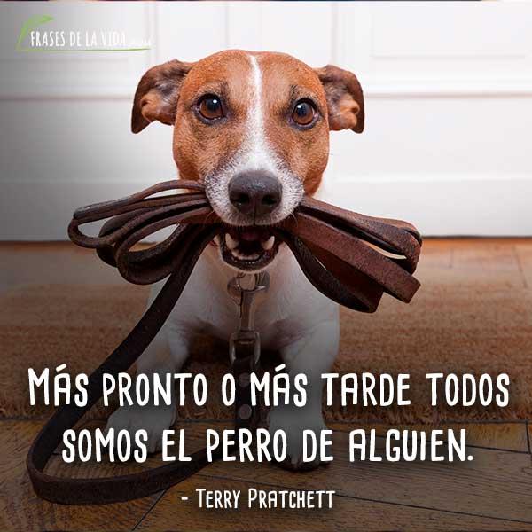Frases-de-perros-7