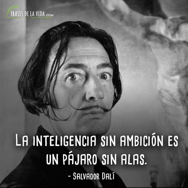 Frases De Salvador Dalí 3 Frases De La Vida