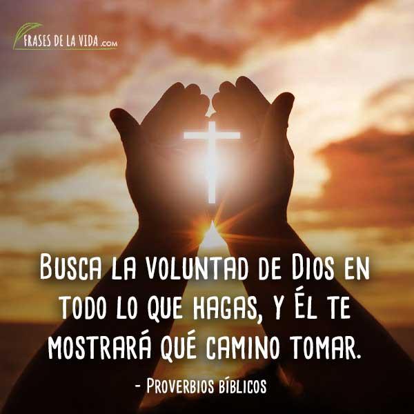 Proverbios-bíblicos-0