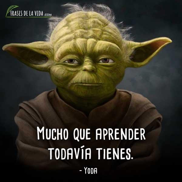 McIntosh XR100 - Página 5 Frases-de-Yoda-1