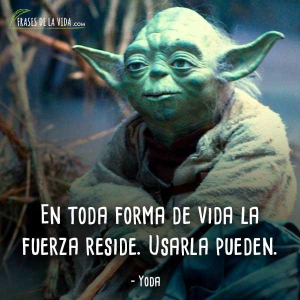 Frases-de-Yoda-7