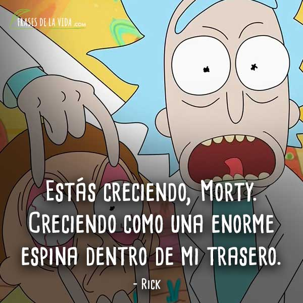 70 Frases De Rick Y Morty Humor A Través De La Galaxia