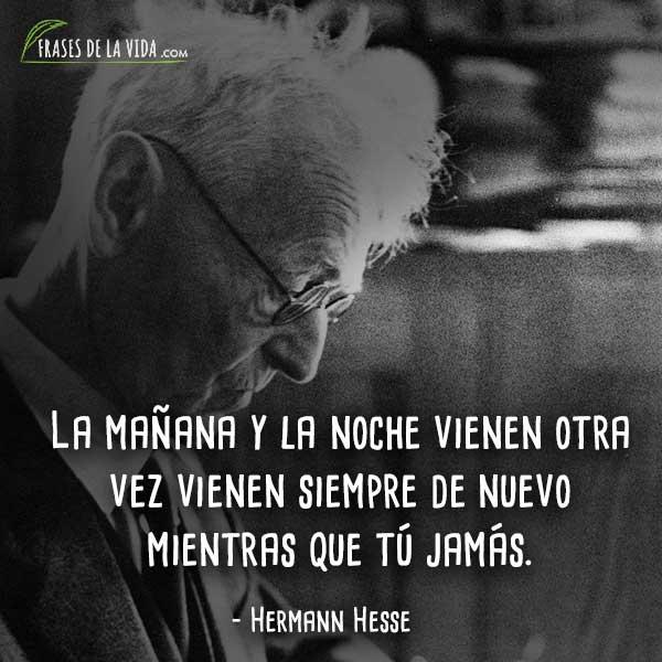 Frases-de-Hermann-Hesse-5