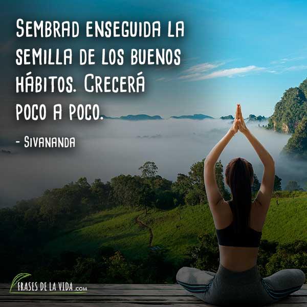 110 Frases De Yoga La Disciplina Milenaria De Cuerpo Y