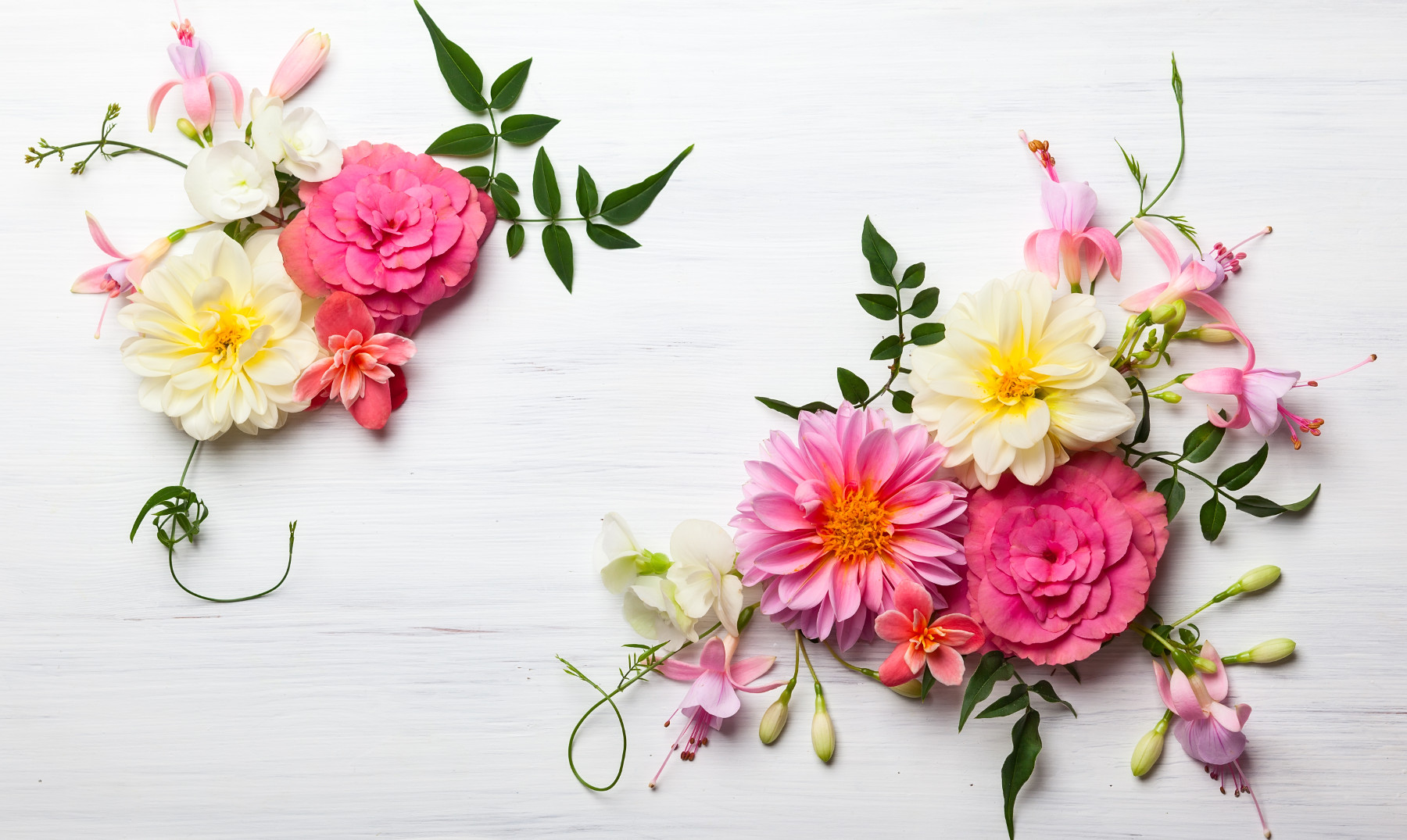 100 Frases De Flores Belleza Y Frescor Natural E