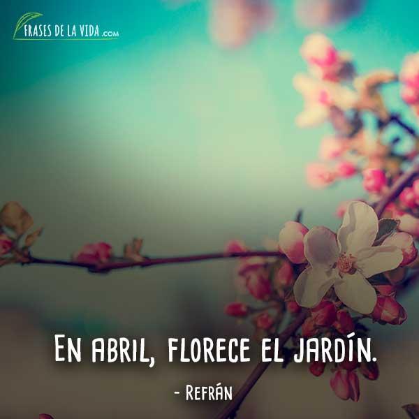 100 Frases De Flores Belleza Y Frescor Natural E Inspirador Con