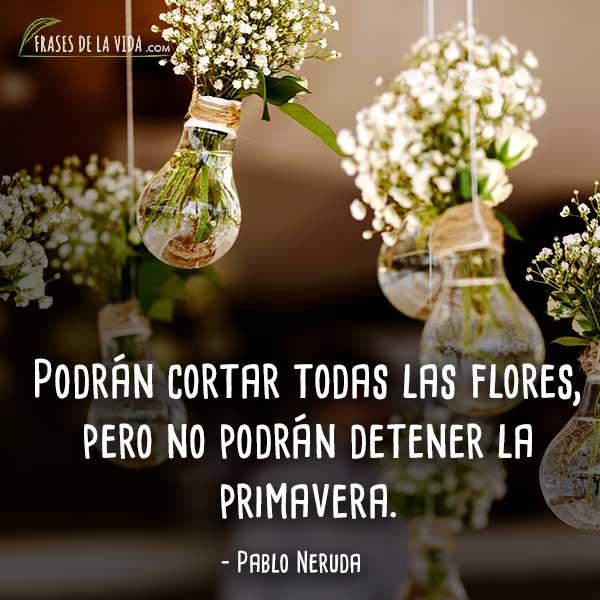 Frases-de-flores-5