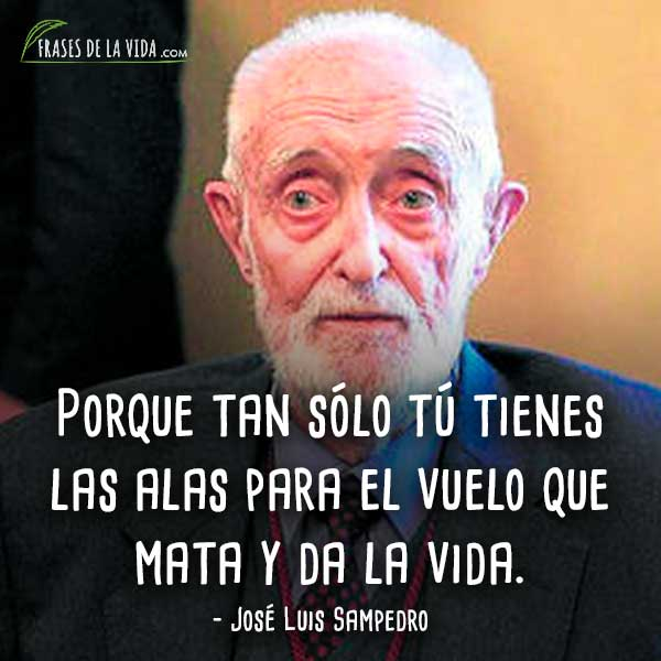 Frases De José Luis Sampedro 10 Frases De La Vida