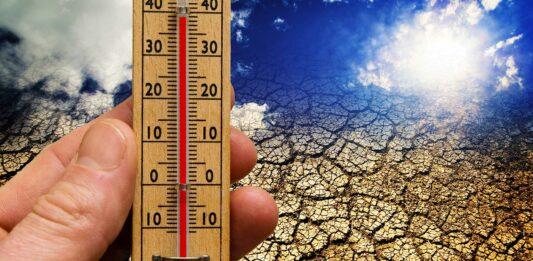 frases de cambio climático