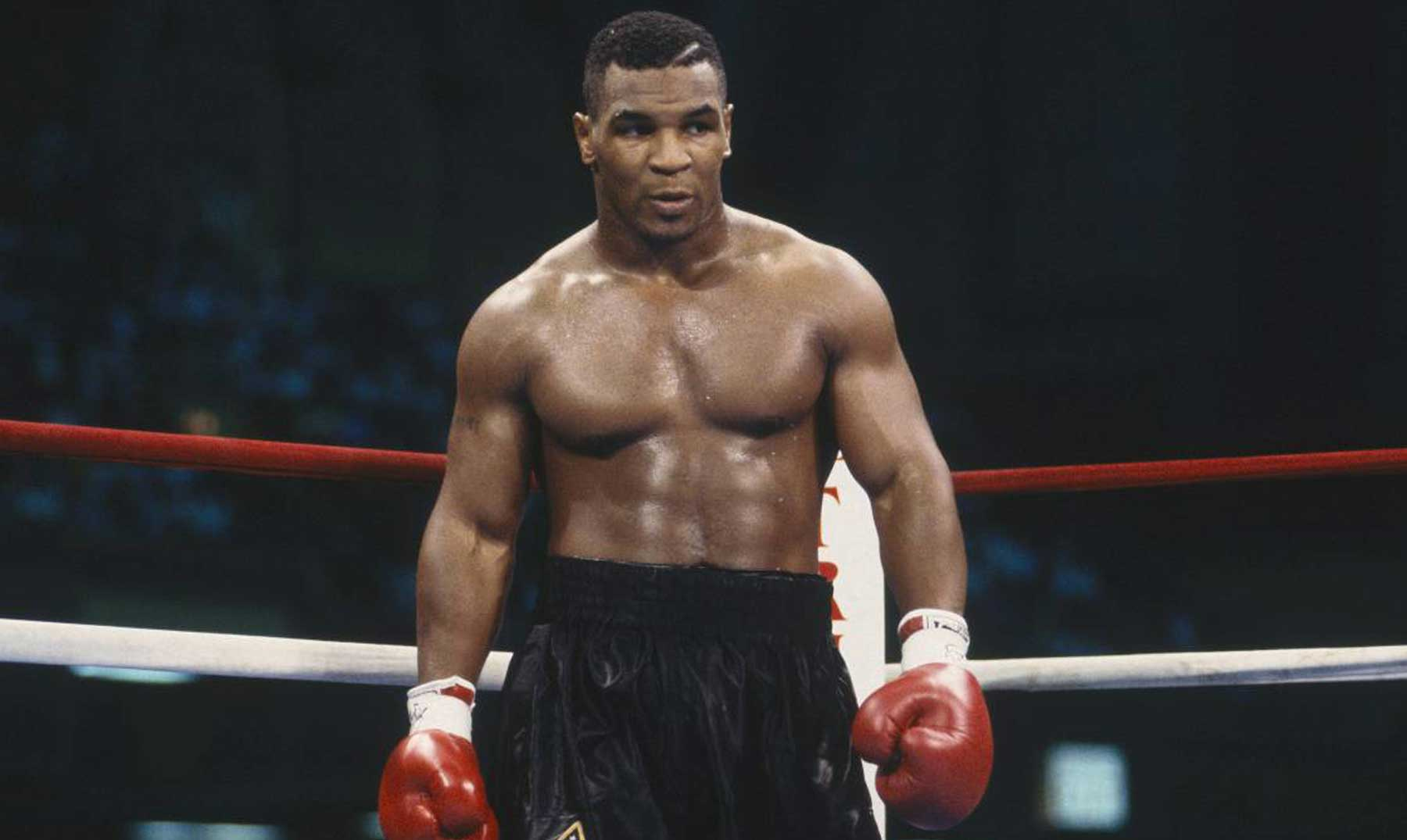 60 Frases De Mike Tyson Un Boxeador De Alto Rango Con