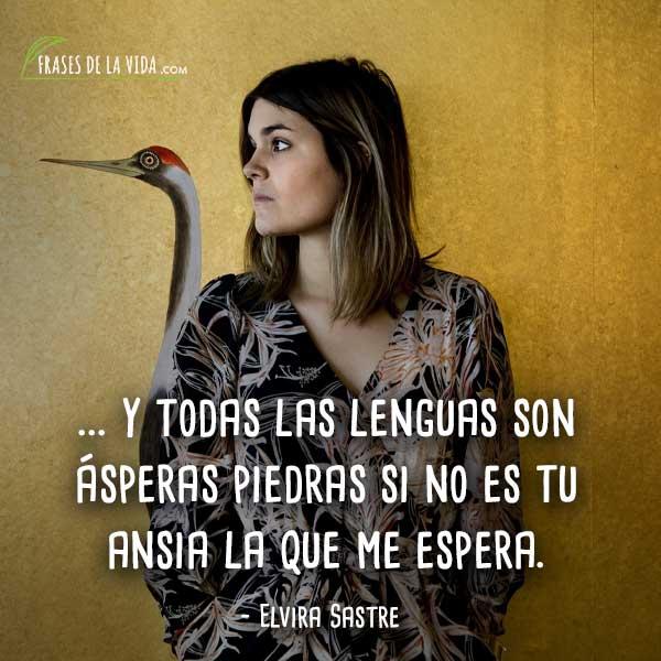 Frases-de-Elvira-Sastre-9