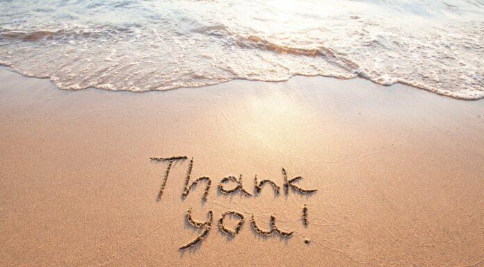 30 Frases de Gracias   Bonitas palabras de agradecimiento