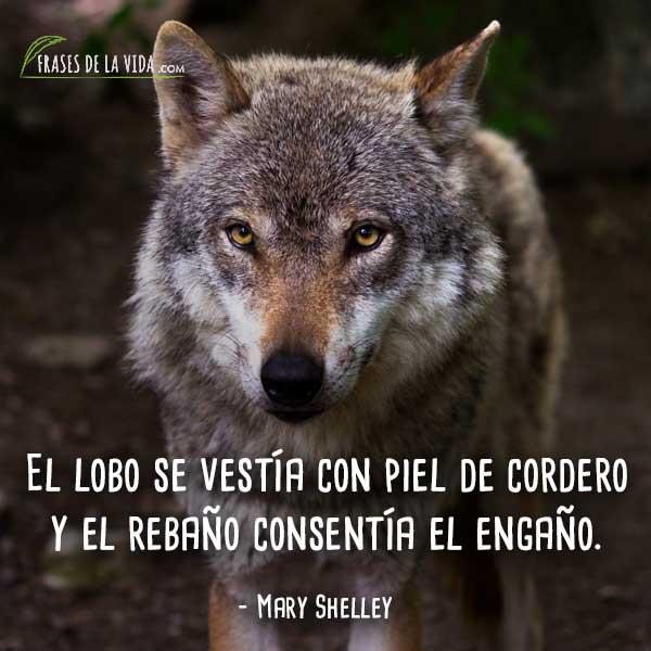 80 Frases de Lobos | Un animal repleto de misticismo - Frases de la vida